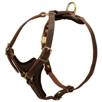 Amstaff Harness Y-Shaped Brown Leather Easy Adjustable for Best Fit
