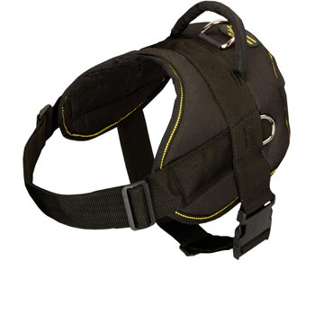 Nylon All Weather Amstaff Harness for Service Dogs