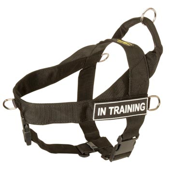 Amstaff Nylon Harness with ID Patches