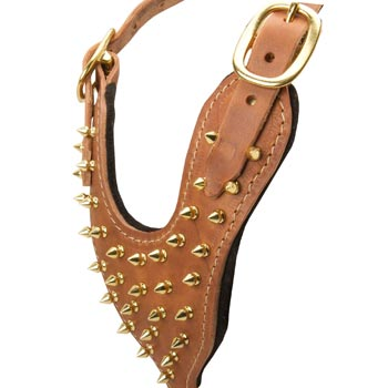 Brass Spiked Leather Amstaff Harness