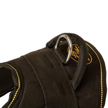 Heavy Duty Handle of Amstaff Harness