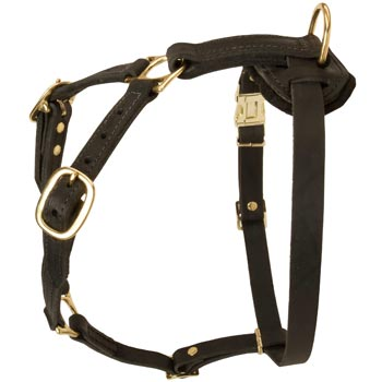 Tracking Leather Dog Harness for Amstaff