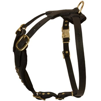 Easy Adjustable Leather Amstaff Harness