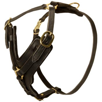 Comfortable Y-Shaped Leather Harness for Amstaff Attack  Training