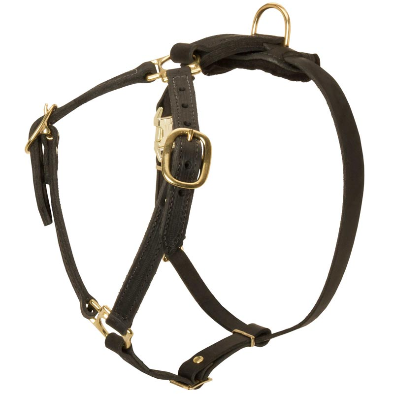 Y-Shaped Leather Amstaff Harness for Tracking and Training