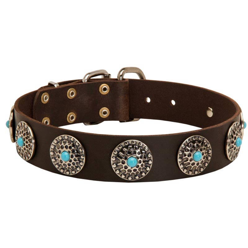 Leather Amstaff Collar with Blue Stones for Stylish Walking