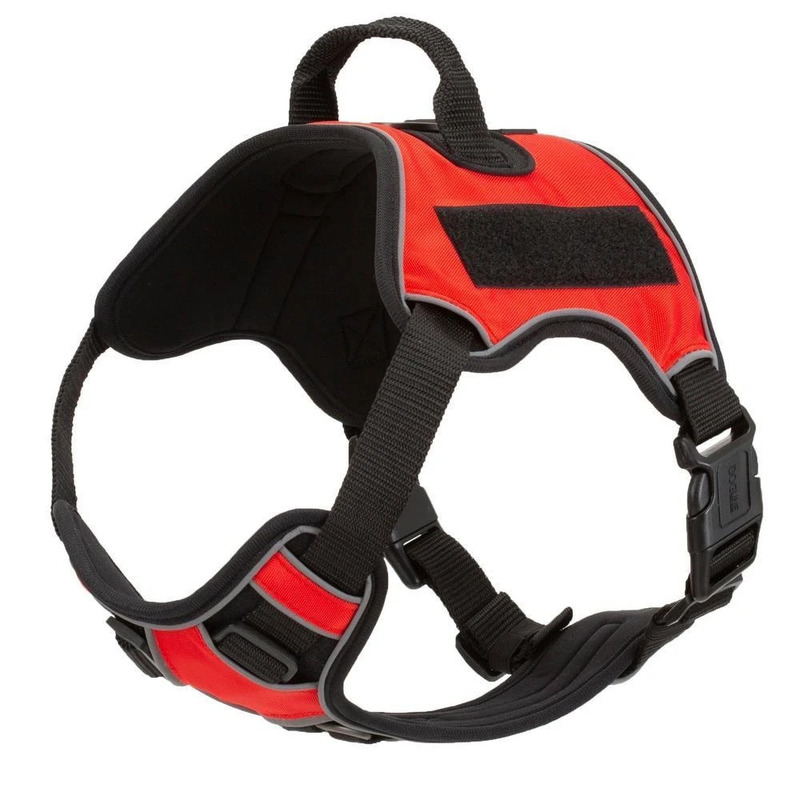 Quest Multipurpose Dog Harness