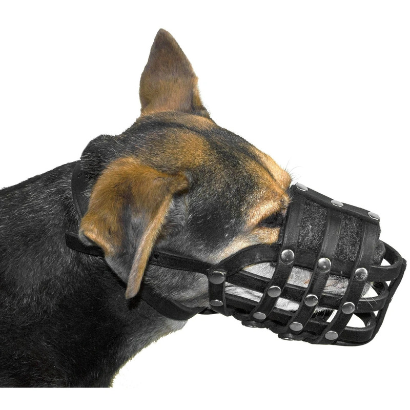 Echo Leather Basket Dog Muzzle