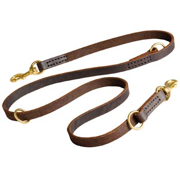 Leather Leash for Amstaff Everyday Walking