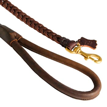 Braided Leather Amstaff Leash with Brass Snap Hook