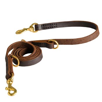 Strong Leather Leash for Amstaff Successful Training