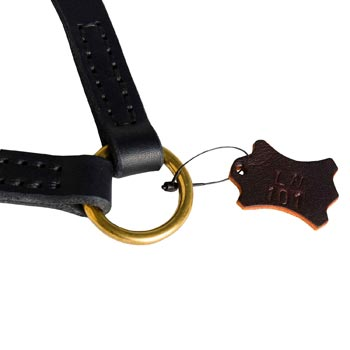 Amstaff Leather Coupler with Rust-proof O-ring