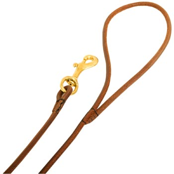 Leather Amstaff Leash with Comfy Round Hnadle