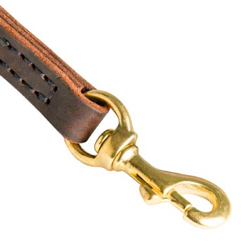 Amstaff Leather Leash with Brass Hardware