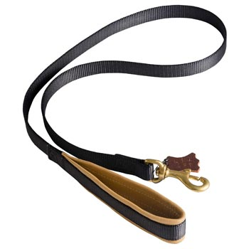 Special Nylon Dog Leash Comfortable to Use for Amstaff