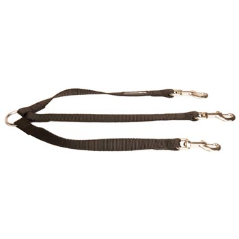 Triple Nylon Leash for Walking 3 Amstaff Dogs