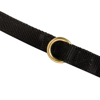 Nylon Amstaff Leash Solid Brass Ring