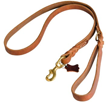 Canine Leather Leash for Amstaff