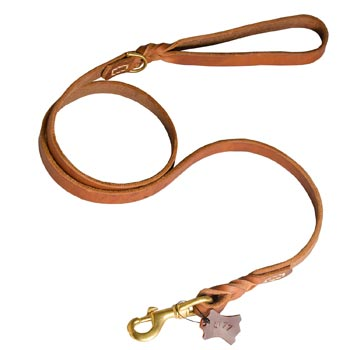 Training Leather Amstaff Leash with Handle