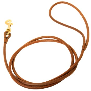 Leather Round Leash for Amstaff Elegant Look