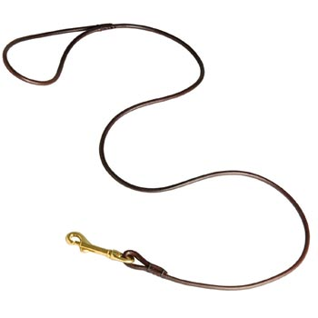 Leather Canine Leash for Amstaff Presentation at Dog Shows