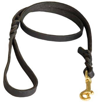 Training Leash for Amstaff