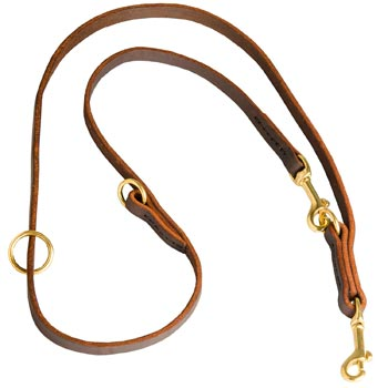 Multipurpose Leather Amstaff Leash