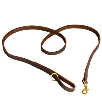 Durable Leather Amstaff Leash