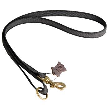 All Weather Nylon Leash for Amstaff Walking