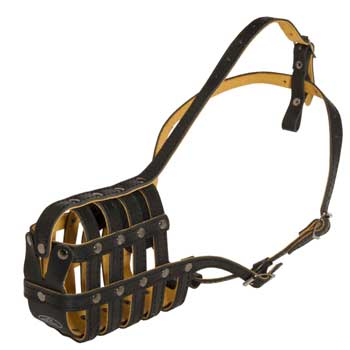 Leather Basket Amstaff Muzzle
