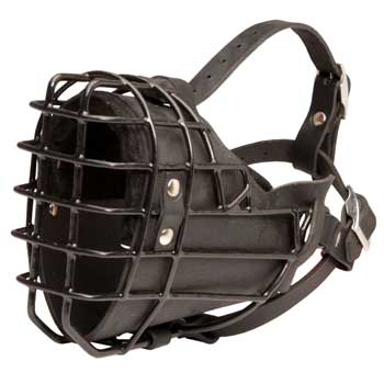 Winter Fully Wire Amstaff Padded Muzzle Cage