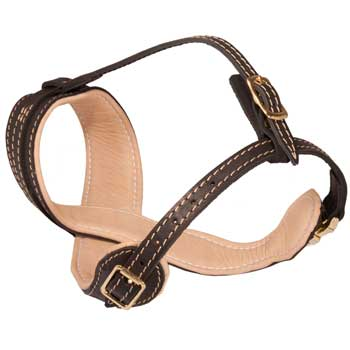 Amstaff Muzzle Leather Easy Adjustable with Quick Release Buckle