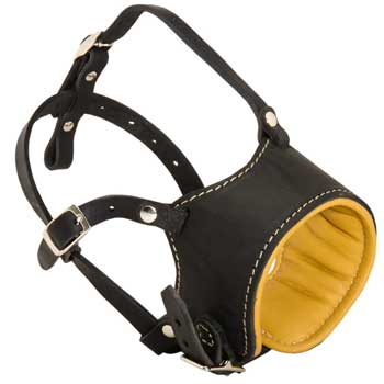 Adjustable Amstaff Muzzle Padded with Soft Nappa Leather for Anti-Barking Training