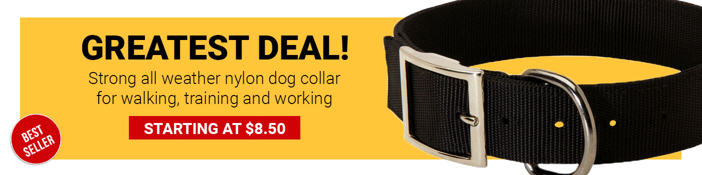 2 Ply Nylon Amstaff Collar
