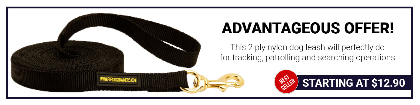 Nylon Amstaff Leash for Tracking and Training